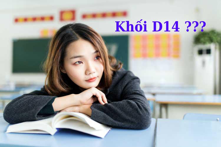 Photo of Tìm hiểu về các ngành học xét tuyển khối D14